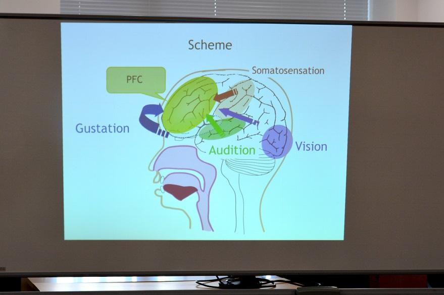 Presentation for Dr. Jang